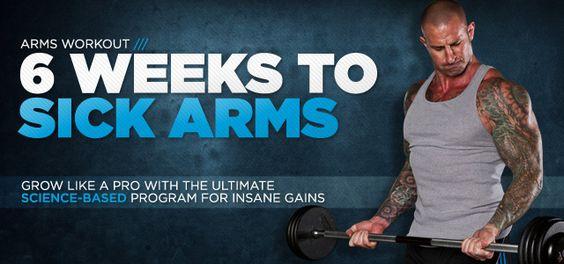 6 weeks to sick arms jim stoppani pdf