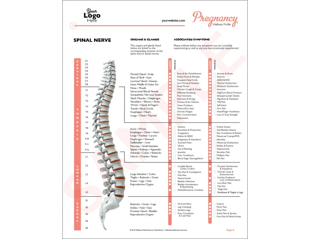 Chiropractic report of findings pdf