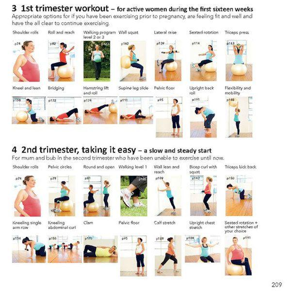 Kegel exercises during pregnancy pdf